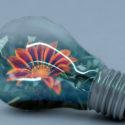 4 tipy na efektivní úsporu energie v domácnosti